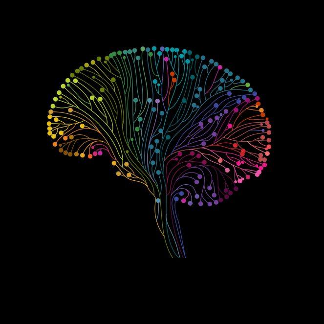 Cerveau-e1554307995470